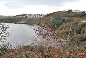 Saltern Cove - geograph.org.uk - 1084668