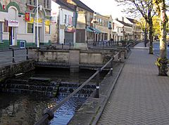 A river running between pavements with railings. Shops behind