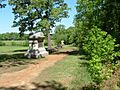 Sunken Road, Shiloh National Military Park