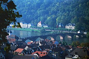 A001, Heidelberg, Germany, the Old Bridge from the Castle, 1990
