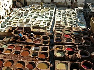 Leather tanning, Fes