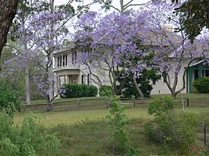Old Government House, Parramatta - spring