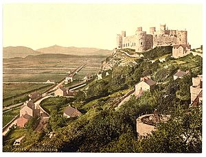(The castle, Harlech Castle, Wales) (LOC) (3751638943)
