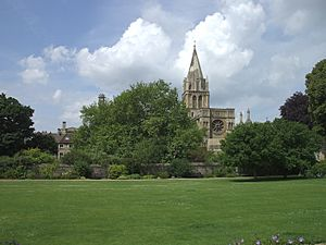 Christ Church Cathedral from across the Meadow