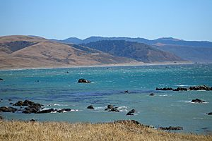 Cape Mendocino Coast