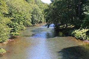Mahanoy Creek near the Dornsife Gap