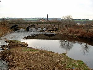 Railway Bridge over the River Calder hear Healey - geograph.org.uk - 113922