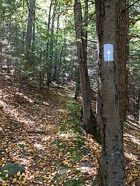 "Tunxis ""White-Dot"" Blue-Blazed hiking trail near Bradley Brook and CT Route 4 in Nassahegon State Forest (Burlington, Connecticut).jpg"
