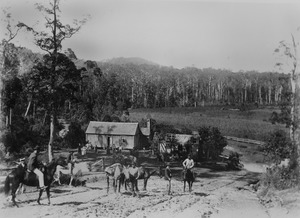 View of a farm in the Mudgeeraba district ca. 1891f