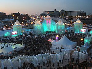 2004 Winter Carnival Ice Castle (night)