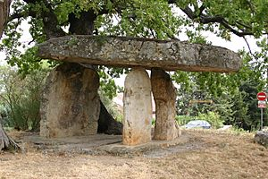 Celtic Stone in Draguignan - Provence - France