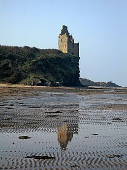 Greenan Shore and Castle - geograph.org.uk - 380033.jpg