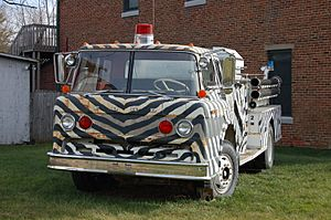 Zebra Fire Engine