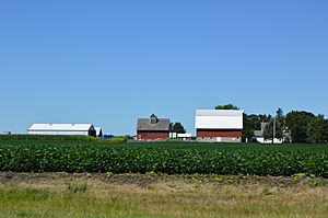 Clayton Township farmstead with soybeans