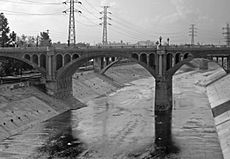 Los Angeles River Bridge B&W