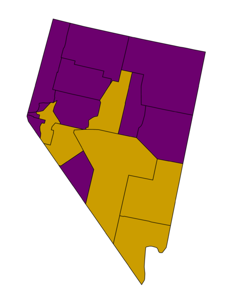Nevada Democratic caucuses, 2008