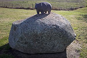 Wombat sculpture at Wombat, NSW