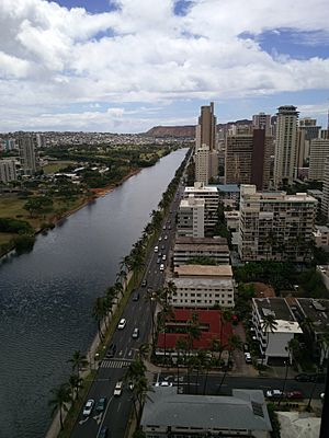 Ala Wai Canal from the 29th Floor