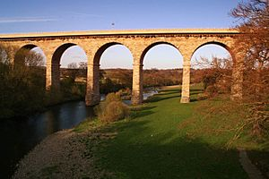 Newton Cap Viaduct-by-Neville-Davison