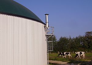 Haase anaerobic digester