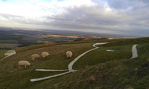 The head of the White Horse of Uffington