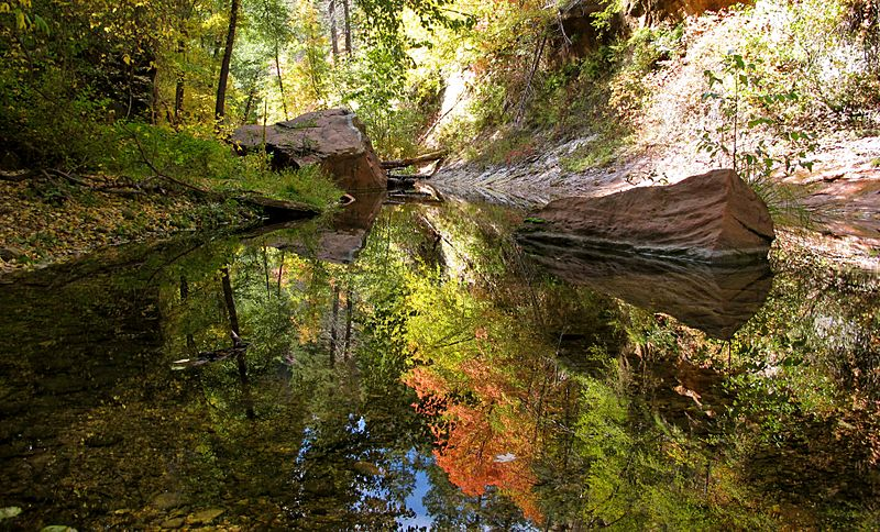 West Fork of Oak Creek, reflections