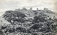 Remains Of Dyserth Castle 1917