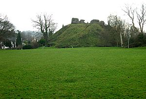 Plympton Castle - geograph.org.uk - 103022