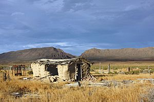 A352, Reese River Valley, Nevada, USA, abandoned shack, 2011
