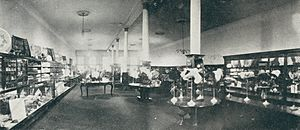 Millinery Deaprtment, second floor, Summit St.; The Lion Store, Toledo, O. - DPLA - b299683c9a281410af279a3384bdb23a (page 1) (cropped)