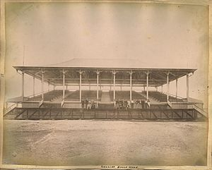 StateLibQld 1 242354 Grandstand at the Townsville race track