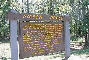 Pigeon Roost - Natchez Trace Parkway - 2
