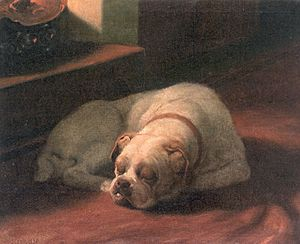 Arthur Heyer - Bulldog Sound Asleep