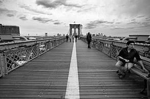 Bridging Brooklyn (2553059935)