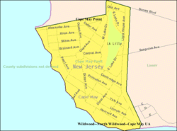 Census Bureau map of Cape May Point, New Jersey