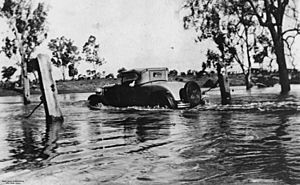 StateLibQld 1 44439 Flooded Dogwood Creek, Miles, Queensland, 1930s