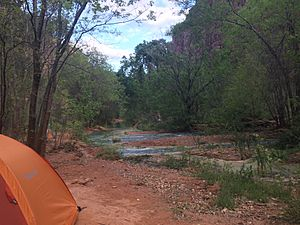 Havasu Creek Campground