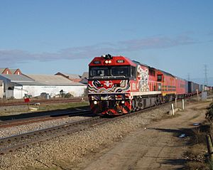 Rail transport in South Australia Facts for Kids