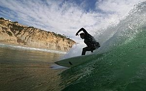Blacks surfer