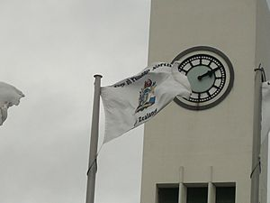 Palmerston North City Flag (Displayed)
