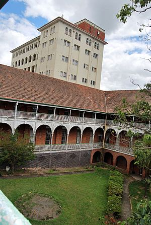 Lady Lamington in foreground, nurses quarters background (2008).jpg