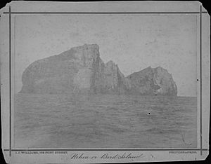 Nihoa or Bird Islands, photograph by J. J. Williams (PP-45-10-006)