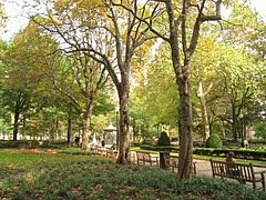 Rittenhouse Square - autumn - IMG 6570