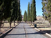 Evergreen Cemetery Bisbee