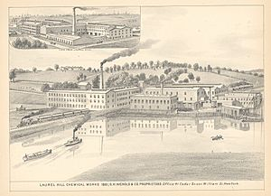Laurel Hill Chemical Works