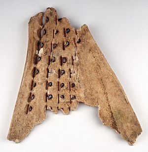 Chinese oracle bone (16th-10th C BC) - BL Or. 7694