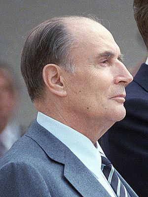 Reagan Mitterrand 1984 (cropped)