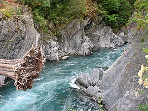 Elwha River at Goblins Gate1