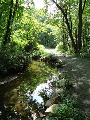 Loantaka Brook Reservation bikeway horse path and stream and reflections
