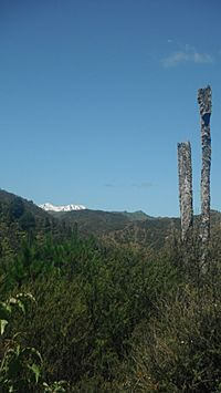 Mount Ruapehu in the Ruapehu District along Ruatiti Road